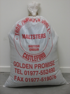 Golden Promise pale ale malt (Thomas Fawcett), hel, 25 kg