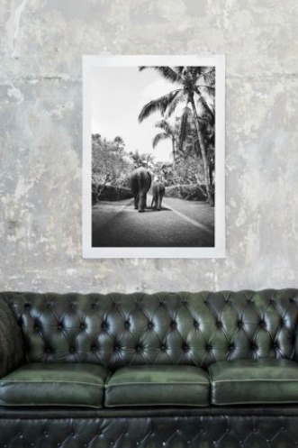LOVE WARRIORS - ELEPHANT WALK, 50×70 CM