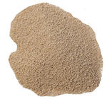 Lalvin CY3079 wine yeast, 8 g
