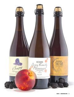 Craft Beer & Brewing: Fruit in Beer (Jun-Jul 2017)