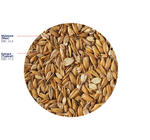 Flaked Torrefied Oats, 3 kg