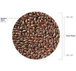 Roasted Barley (Crisp), hel, 3 kg