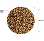 Amber Malt (Crisp), whole, 3 kg