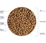 Clear Choice Malt™ Extra Pale (Crisp), hel, 25 kg