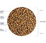 Dextrin Malt (Crisp), hel, 25 kg