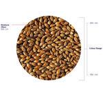 Brown Malt (Crisp), hel, 25 kg