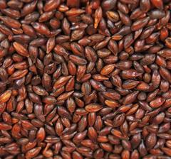 rostat korn (Weyermann®), hel, 1 kg