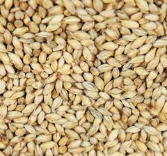 Pale Ale Malt (Weyermann®), whole, 25 kg