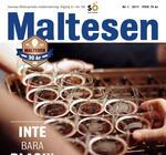 Maltesen nr 1, 2017