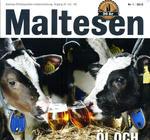 Maltesen nr 1, 2015