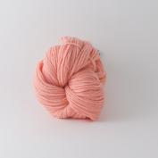 Abuelita Merino Worsted - Pink peach