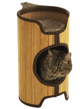 Kattsäng torn bamboo