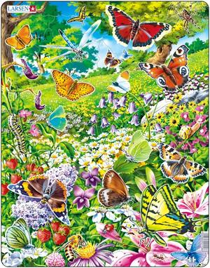 Rampussel fjärilar