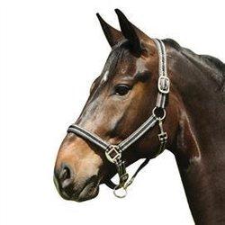 Randig grimma stl ponny