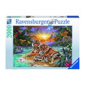 Ravensburger pussel: Tigers at Sunset - 2000 bitar