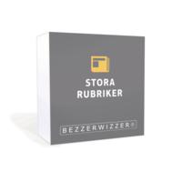 Bezzerwizzer Bricks - Stora Rubriker