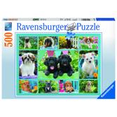 Ravensburger Pussel - Puppy Love - 500 bitar
