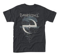 Evanescence Space Map TS