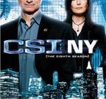 CSI: New York - Säsong 8 (5 disc)