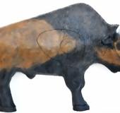 Bisonoxe  (Bison Bison)