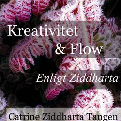 Ljudbok: Kreativitet & flow enligt Ziddharta Audiobook