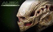 Aliens Resurrection: New Born Alien Life-Size Head
