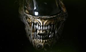 Aliens: Alien Warrior Life-Size Head