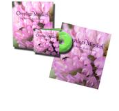 Osynliga mirakel CD+bok