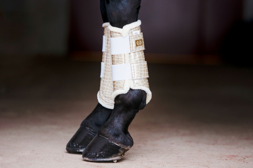 Dressage Boots, gold, foreleg
