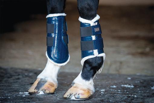 Dressage Boots, navy, foreleg