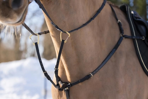 Breastplate three point Gold