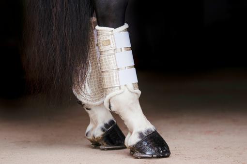 Dressage Boots, gold, hind leg