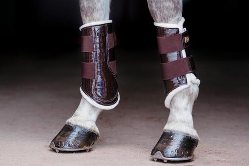 Dressage Boots, brown, foreleg