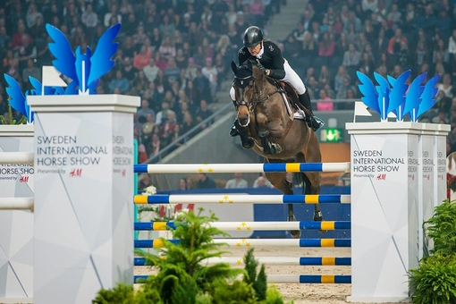 High Jump Revolution Ponny