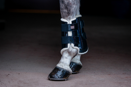 Dressage Boots, black, foreleg