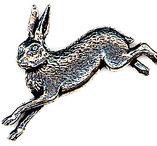 Hare, Tennbrosch