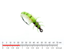 Caddis Larva 2 Green
