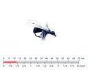 Winged Ant Black