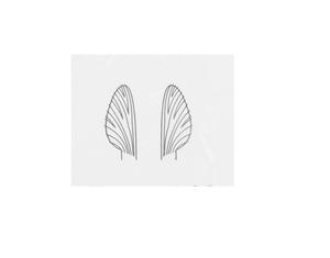 J:son Realistic Wing Material RWM M4