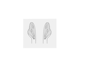 J:son Realistic Wing Material RWM U4