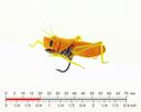 Hopper 4 Yellow