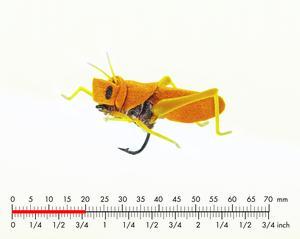 Gräshoppa 4 Yellow