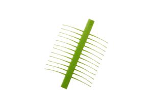 J:son Realistic T&A Micro Green