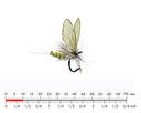 Mayfly Dun 4 Olive Grey