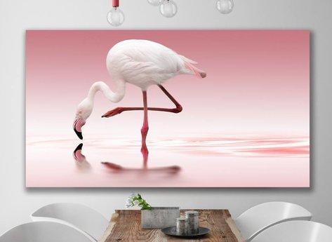 Rosa - Tavla - Flamingo