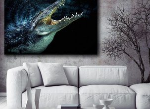 Tavla - Krokodil