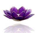 Lotuslyktan i snäckskal - Guldmetal  -Lila - Chakra 7