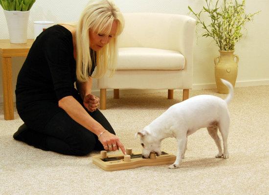 DogDomino madera. Grado de dificultad 3. Natural, Eco-Friendly material