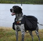 Dragråttans Back bag