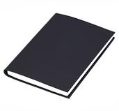 Blank Svengali Notebook by Alan Wong - Small